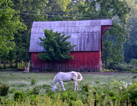 Red Barn White Horse 840