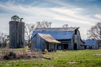 North Carolina Farm 335