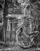Gardens At the Chapel of Ease, Black and White