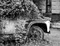 Truck as Planter, Black and White