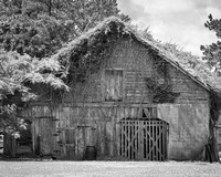 Jamesville Barn, Black and White